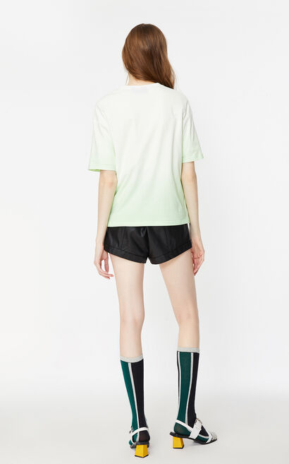 字母漸層印花短袖上衣, 淺綠, large